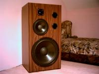 mega kolumna na głośniku stx 42cm warto zobaczyć